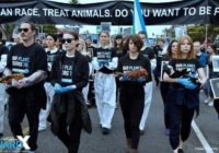 The National Animal Rights Day transitions to an online event in response to the coronavirus